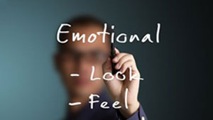 The logic of emotion